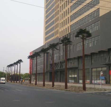 上海七欣科地产仿真植物棕榈树安装结束