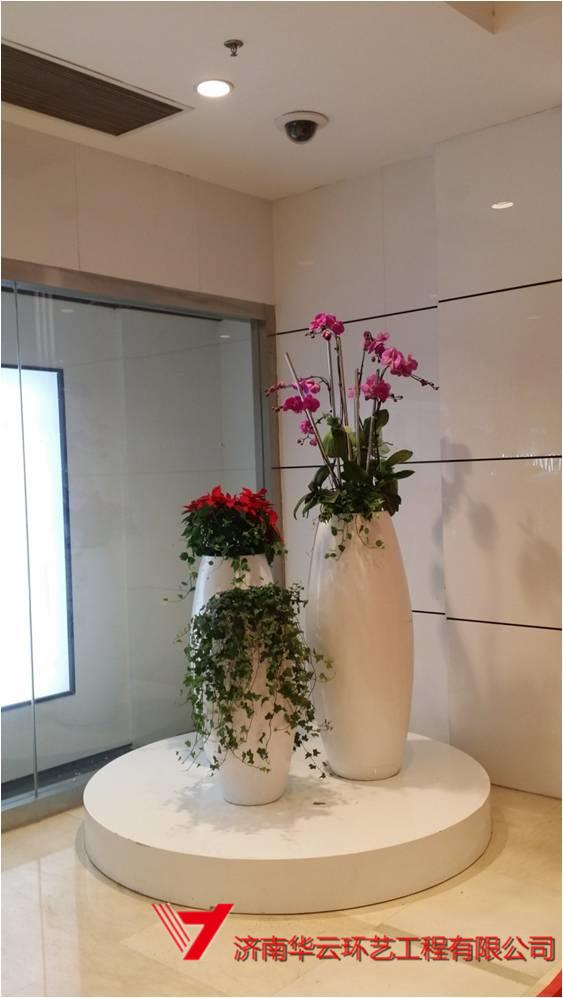 花缸花艺景观